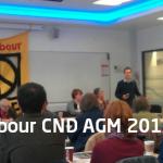 Labour CND AGM 2013